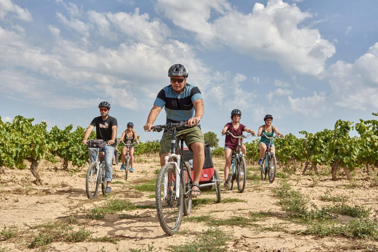 Visita una bodega de la Carretera del Vi en bicicleta o Ebike